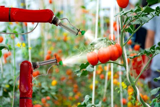Ege Yaş Meyve ve Sebze İhracatçıları Birliği Başkanı Uçak'tan tarım alanlarının toplulaştırılması talebi