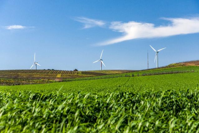 """""""Tarımsal kalkınmanın anahtarı planlı ve sürdürülebilir bir üretim politikası"""""""